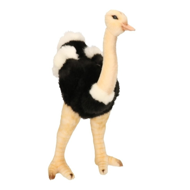 Realistische Struisvogel Knuffel 32 Cm