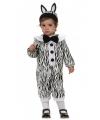 Baby zebra kostuum