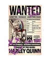 Grote poster Suicide Squad Harley Quinn Wanted 61 x 91cm