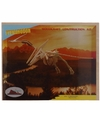Houten Pteranodon bouwpakket