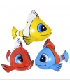 Tropische opblaasbare vis