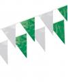 Vlaggenlijnen groen/wit 10 meter
