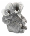 Koala knuffelbeer 28 cm